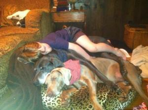 Chet Napping on Dixie and Daisy