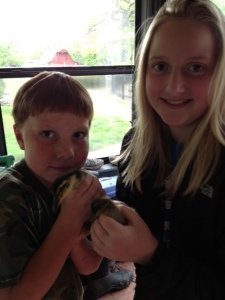 The Littles with their new ducks