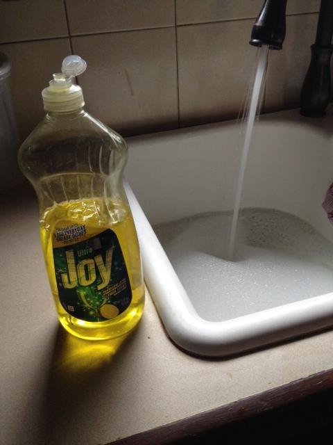Joy?  Okay, Joy.